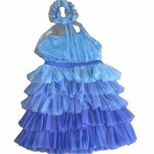 Blue Ombre Tulle Layered Leotard Dress Dance Fairy